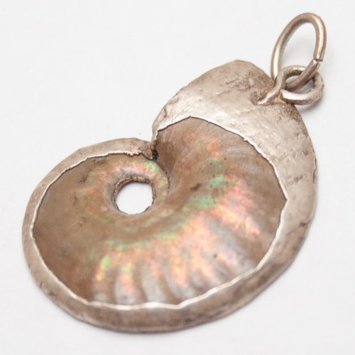 Opalised Ammonite Pendant