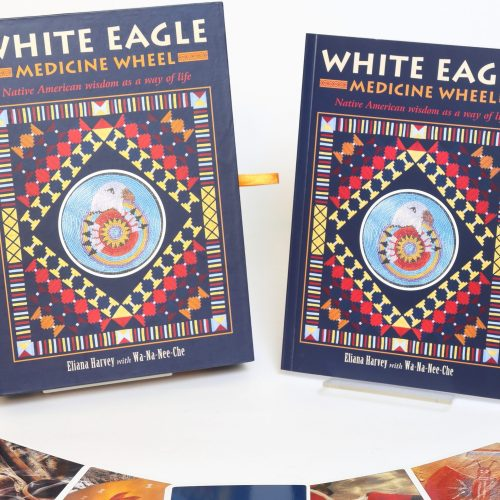 White Eagle Medicine Wheel - Eliana Harvey
