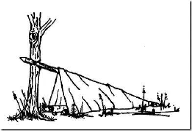 One-Man shelter using tree, pole, and covering