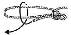Slip a Half Hitch over both ends of the loop
