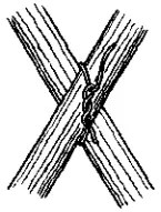 Diagonal Lashing - begin with Timber Hitch