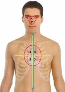 Gunshot critical zones on human body