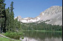 Full-Day-Custom-Pagosa-Scenic-Wildlife-Tour