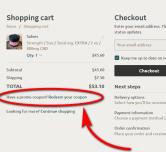 Where to enter coupon code at Checkout