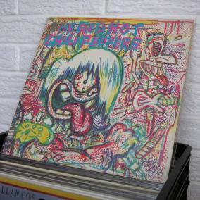 08-THE-RED-HOT-CHILI-PEPPERS-vinyl-record-store-wild-honey-o800px