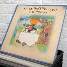 50-vinyl-wild-honey-records-o