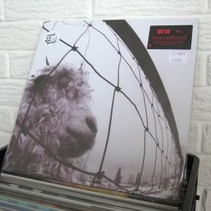 PEARL JAM vinyl record