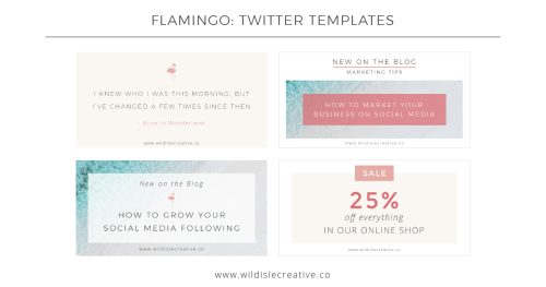 Flamingo - Twitter Template
