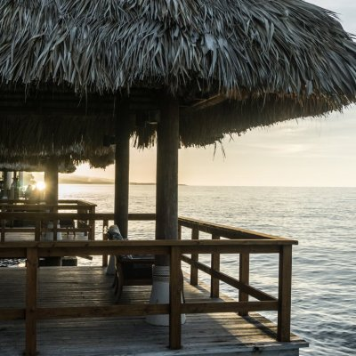 Wild Joy Wanders: Island Life