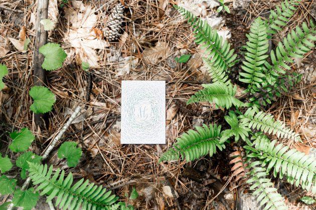 Barroca - Forest Stationery Mockup 6