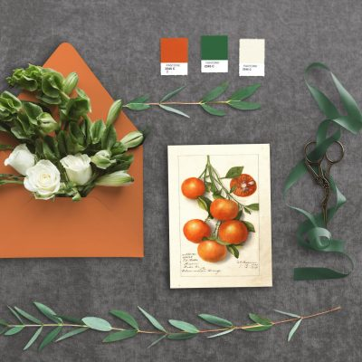 Summer Oranges Wedding Inspiration