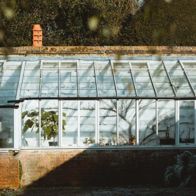 Mini Botanical Garden Inspo