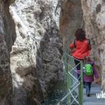 Inicio tramo pasarelas. Excursión al Cañón de los Arcos en Calomarde