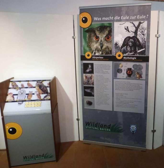 Eulen-Ausstellung © Wildland-Stiftung Bayern