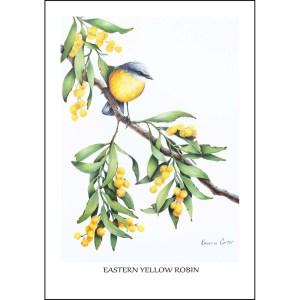Eastern Yellow Robin Greeting Card