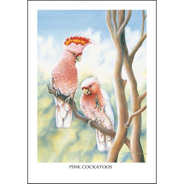 Pink Cockatoos Greeting Card