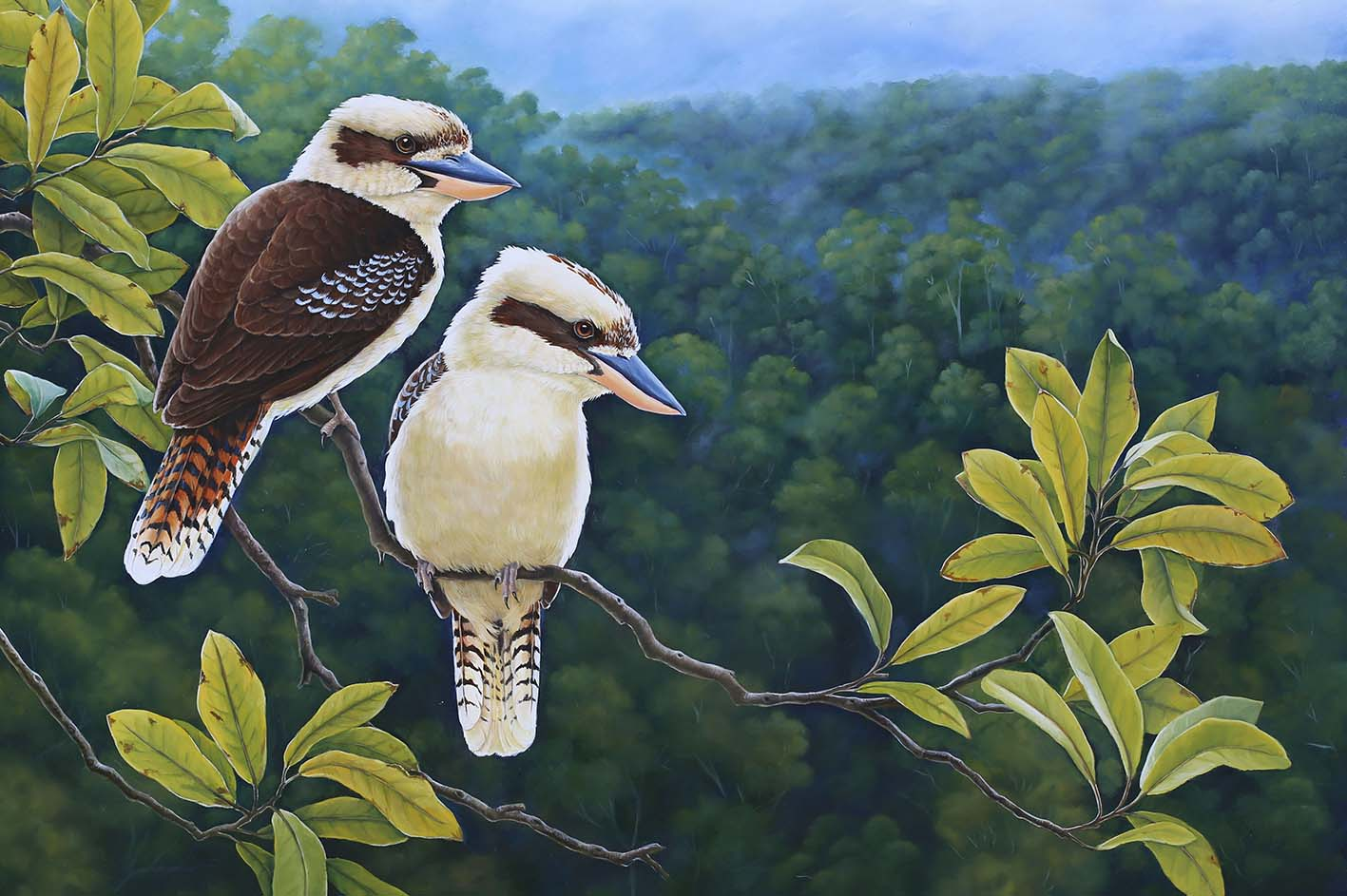 Before the Rain - Kookaburras