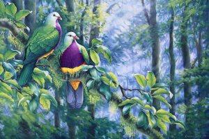 Wompoo Fruit Doves