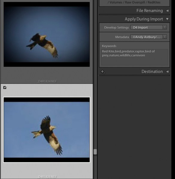 7 Accurate Camera Colour within Lightroom