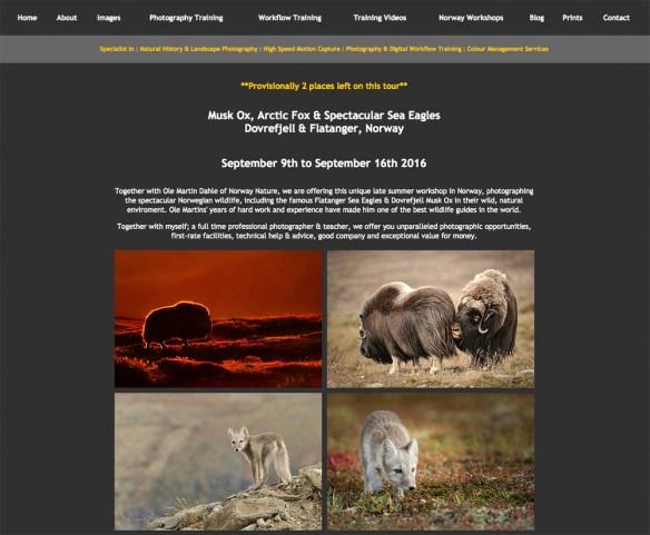Dovrefjell 900x742 Wildlife in Pixels   Website News