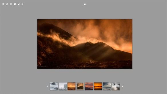 gal 900x510 Wildlife in Pixels   Website News
