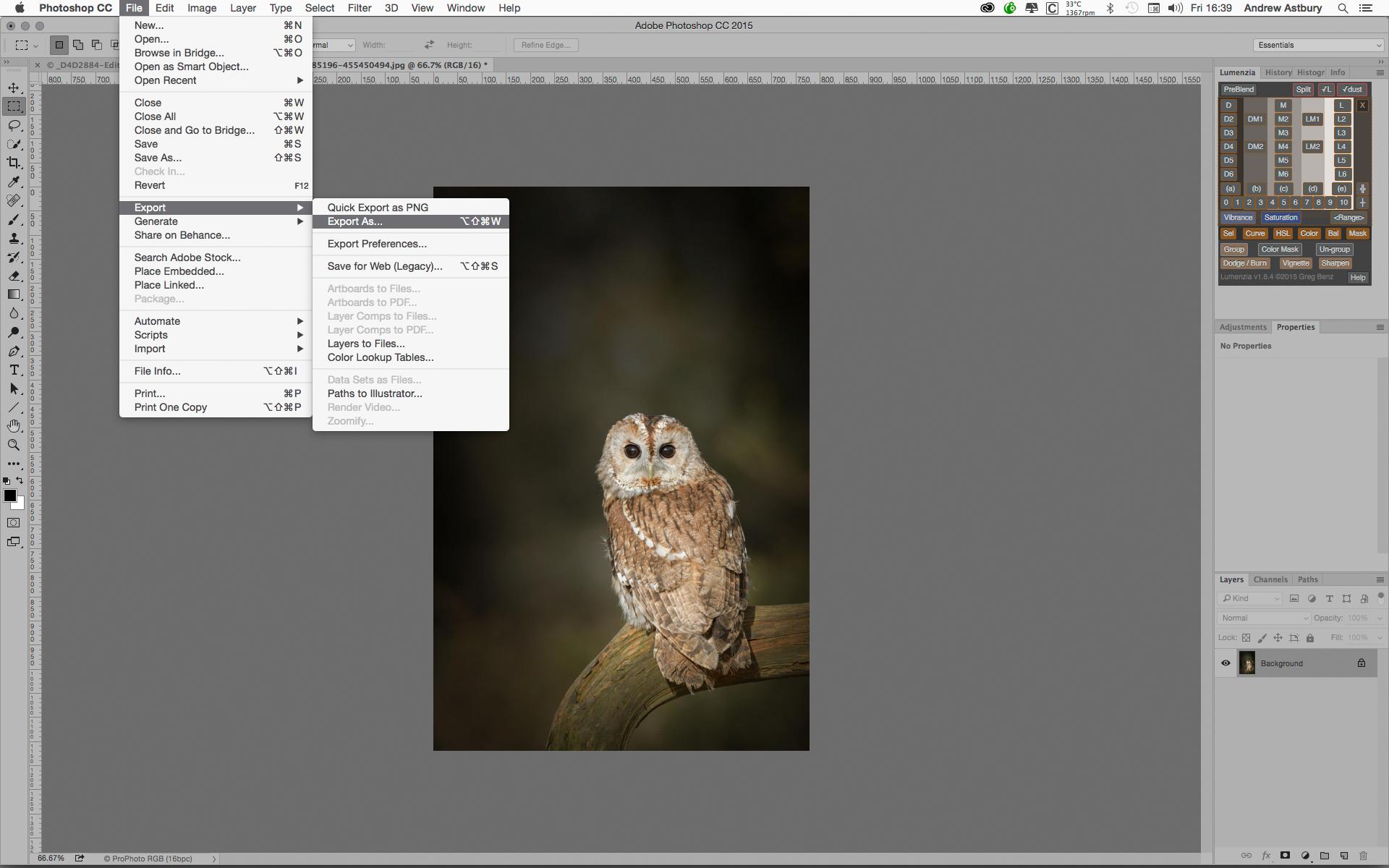 Photoshop metadata and notes - Adobe