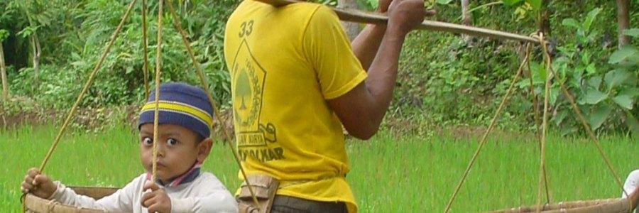 BG | SDG15: The fight for life on land
