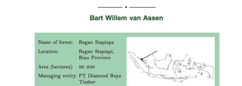 Diamond Raya Timber Concession: Diamonds are forever? (2005)