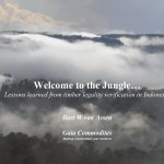Welcome to the Jungle, Lessons learned from timber legality verification in Indonesia (2009)