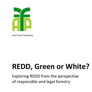 REDD, Green or White? Exploring REDD from the perspective of responsible and legal forestry