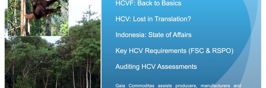Auditing HCV for FSC & RSPO, Key issues and indicators for auditors