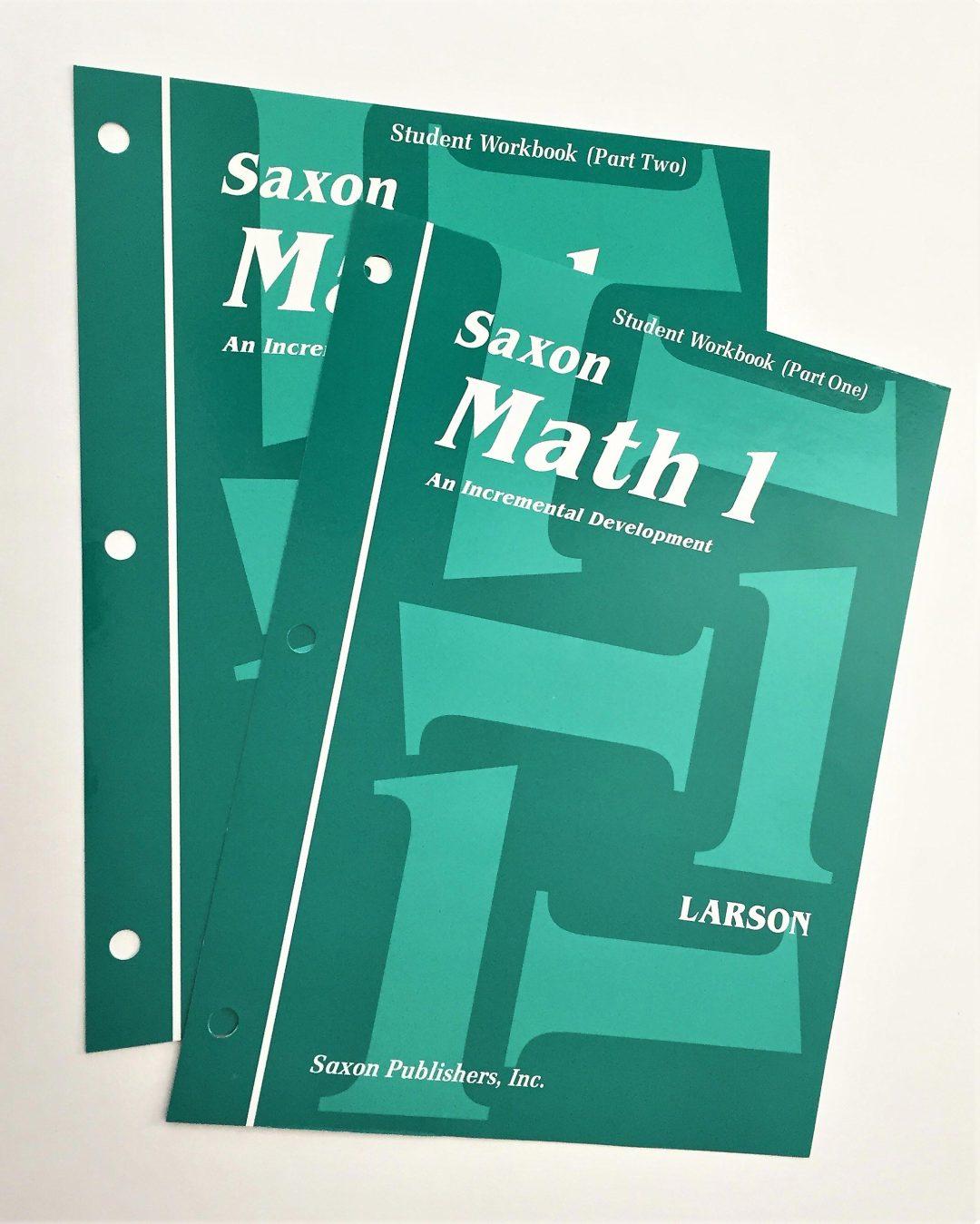 REVIEW: Saxon Math Grade 1 Curriculum | Melanie {Wildly Anchored}