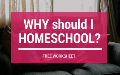 Why Should I Homeschool?