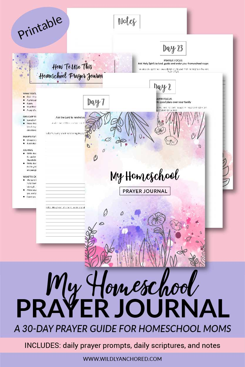 graphic relating to Printable Prayer Journal Pdf called Prayer Magazine: A 90-Working day Prayer Marketing consultant For Mothers (Printable