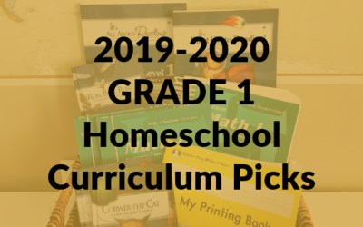 2019-2020 Grade 1 Homeschool Curriculum Picks