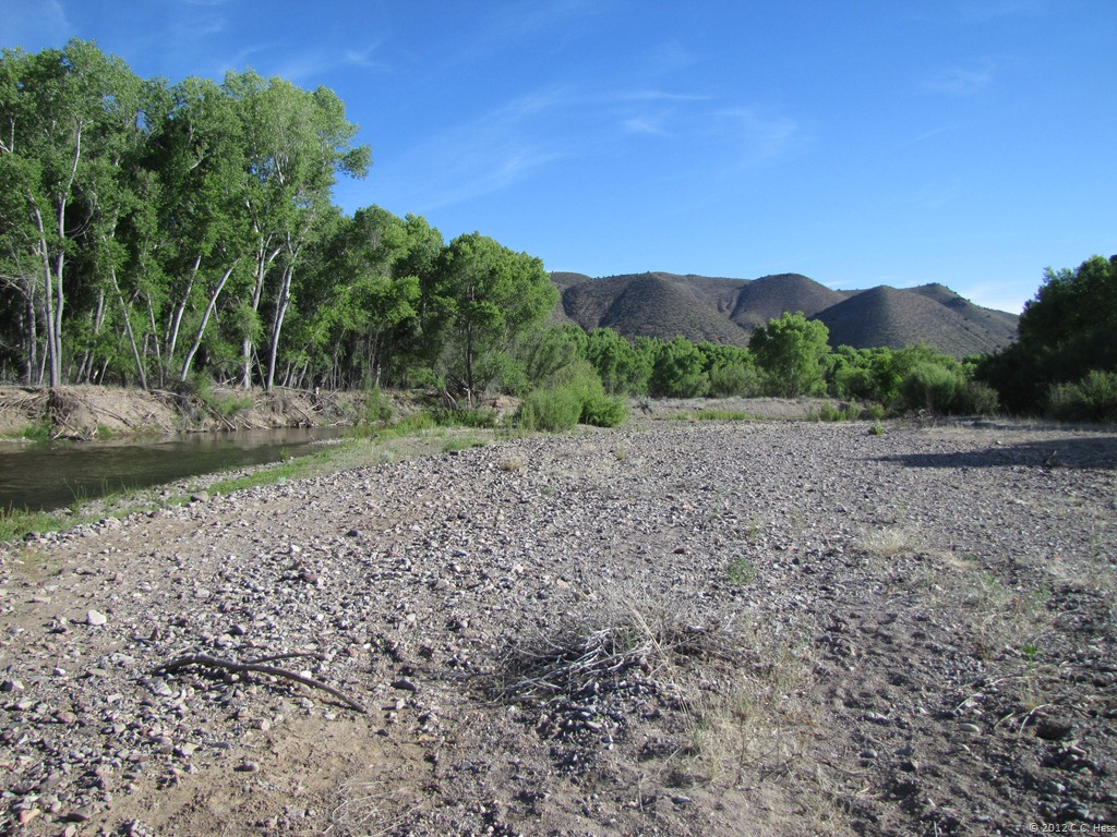 Gila River gravel bar