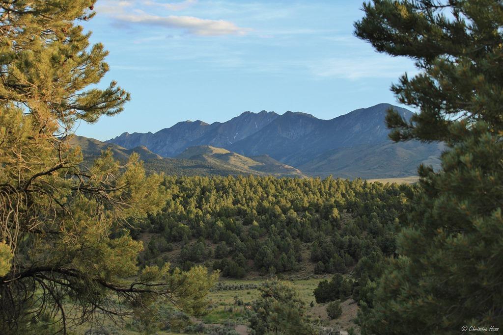 White Pine Range, Nevada