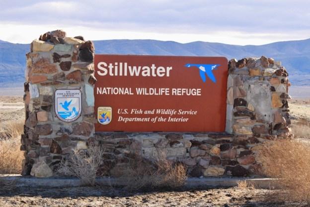 Stillwater National Wildlife Refuge sign