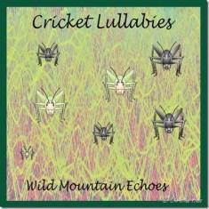 Cricket Lullabies cover