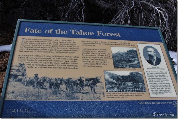 Sign at Sand Harbor State Park describing the heavy logging in the Lake Tahoe basin.