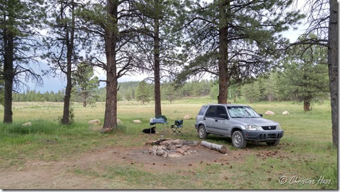 Camp at Bowers Flat, Utah
