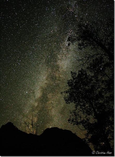 The milky way shines above Lamoille Canyon