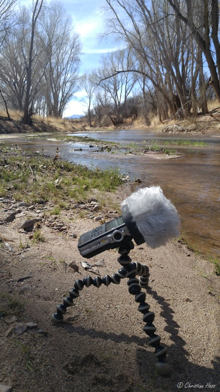 Nature recording with the Sony PCM-D100 - Wild Mountain Echoes