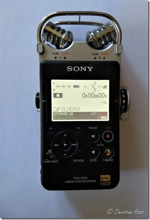 The Sony PCM-D100