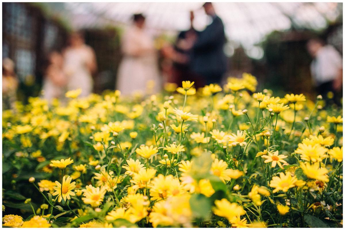 wild-native-photography-wedding-pittsburgh-phipps-blake26