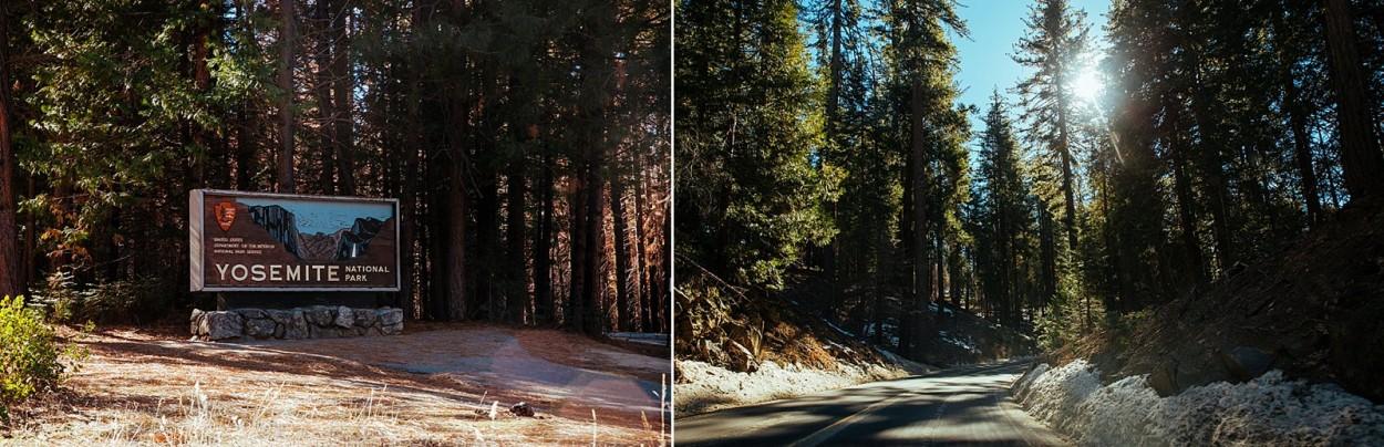 wild-native-photography-blog-yosemite_0003