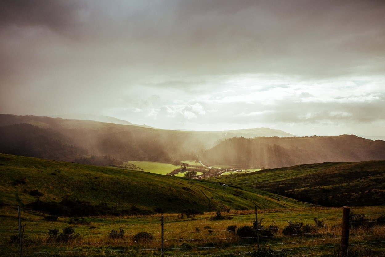 wild-native-photography-pittsburgh-destination-photograher-the-lost-coast-ferndale-california_1814