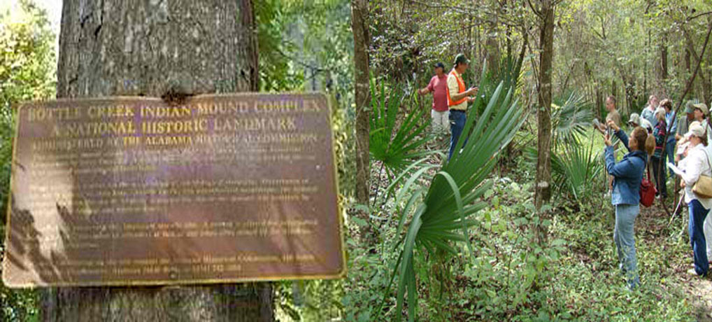 The Bottle Creek Indian Mound Interpretive Tour