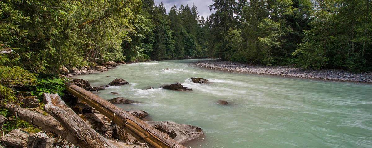 Nooksack River, © Brett Baunton