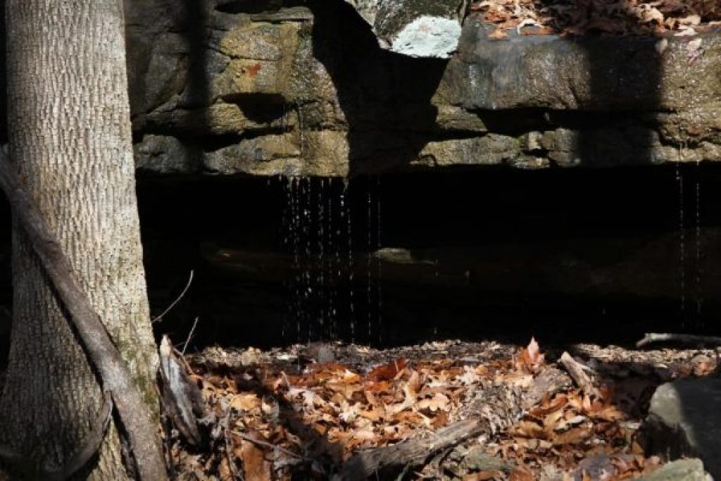 a dripping spring